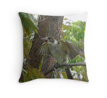 Juvenile Butcher Bird Throw Pillow