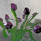 Tulip Bouquet by MichelleR