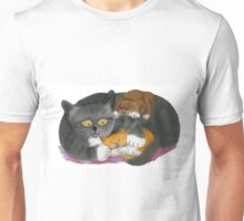Momma  Cat and her Two Kittens Unisex T-Shirt