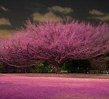 Pink Tree by Ann Pinnock