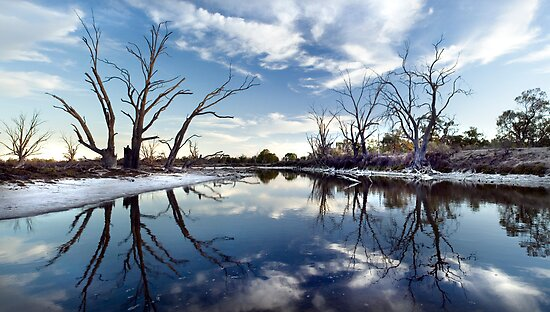 Lyrup Flats by Steve Chapple