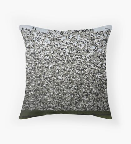 Can you count? Throw Pillow