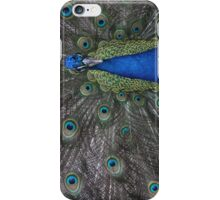 Peacock Original Phone Case iPhone Case/Skin