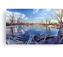 Lyrup Flats Log Jam Canvas Print