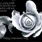 To My Lovely Wife by Wanda Raines