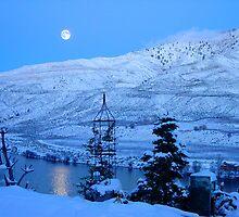 Blue Winter Moon by Arkanjel