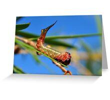 Colourful Grub Greeting Card