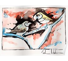 Double Bar Finches Poster