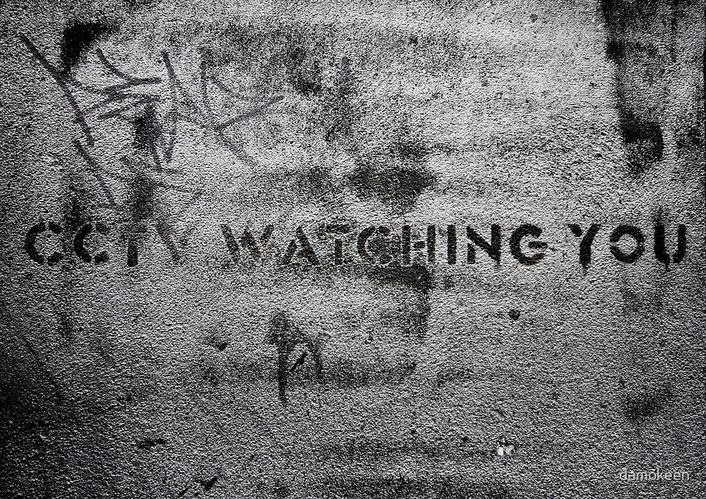 CCTV is watching you! by damokeen