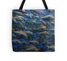 Snappers in shark yolanda reef  Tote Bag
