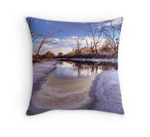 Backwater dry-out. Throw Pillow