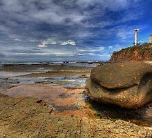 Rock Shelf at Low Tide-1262 by Barbara Harris