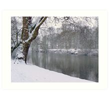 Looking To Rowntree Park Art Print