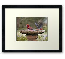 Alone At Last Framed Print