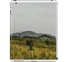 Across and over. iPad Case/Skin