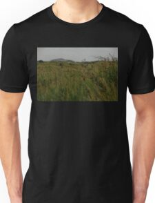 Long grass. Unisex T-Shirt