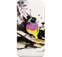 Gouldian Finches iPhone Case/Skin