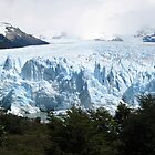 Patagonia National Parks by kjcasey