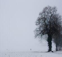 The Bleak Mid-Winter by dozzie