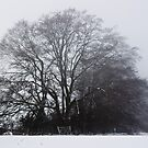 Big Tree by dozzie