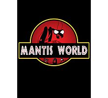 Mantis World Photographic Print