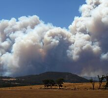 Bunyip State Forest bushfire taken from the freeway at 1pm on 7 Feb 09 by Bev Pascoe