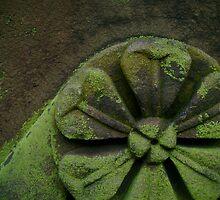 Mossy Stonework by reflector