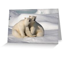 Polar Bear Brothers Greeting Card