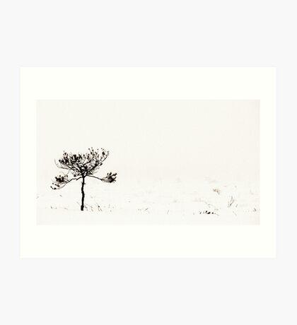 From the Fog I Art Print