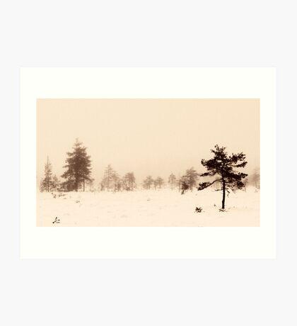 From the Fog V Art Print