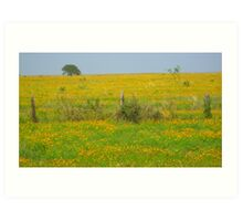 All is quiet on the plain Art Print