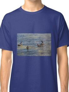 SWANS AT SEA Classic T-Shirt
