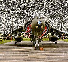 Harrier GR.7 ZD407 hiding by Colin Smedley