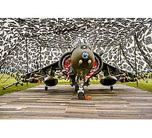 Harrier GR.7 ZD407 hiding Photographic Print