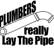plumbers really lay the pipe by teeshoppy