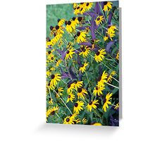 Coneflowers and Wandering Jew Greeting Card