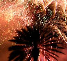 Fireworks in paradise by Zoe Harmer