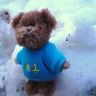 Teddy in Blue in the Snow by karenuk1969