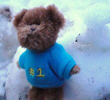 Teddy in Blue in the Snow by karenuk1969