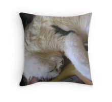 I`m a softy really just don`t push me Throw Pillow