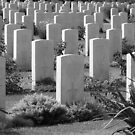 Allied War Cemetery, Souda Bay, Crete #3 by acespace