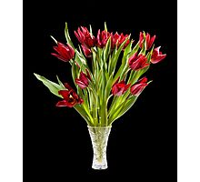 cut tulips bouquet in glass vase Photographic Print