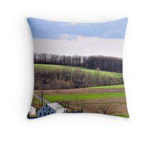 Pennsylvania Winter Throw Pillow