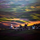 View from Steptoe Butte by Olga Zvereva