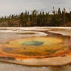 Chromatic Pool by Olga Zvereva