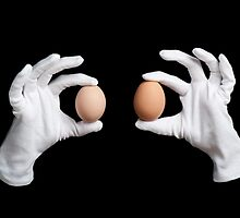 whole eggs in white gloves by Arletta Cwalina