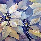 White Pointsettia by bevmorgan