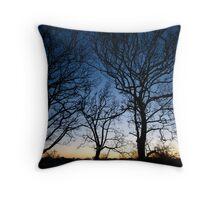 Primrose Hill Throw Pillow