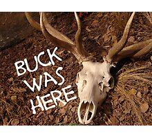 Buck Was Here Photographic Print