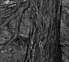 Larch Tree by itchingink